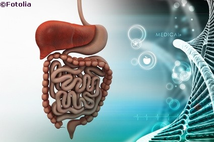 Darmbakterien bieten neue Hoffnung für Menschen mit Zöliakie